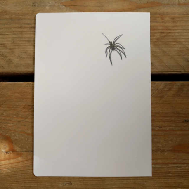 Personalised Stationery : Seyes Ruled : Arachnid