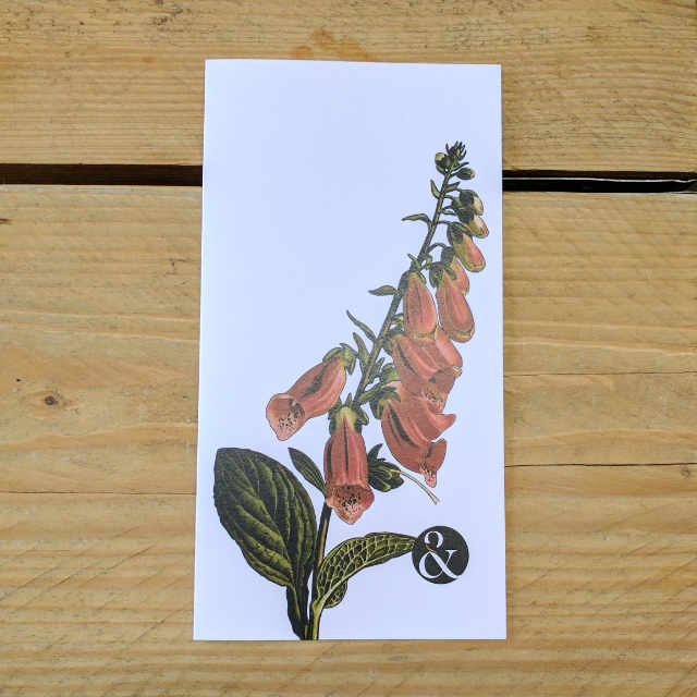 Personalised Stationery : Plain : Digitalis