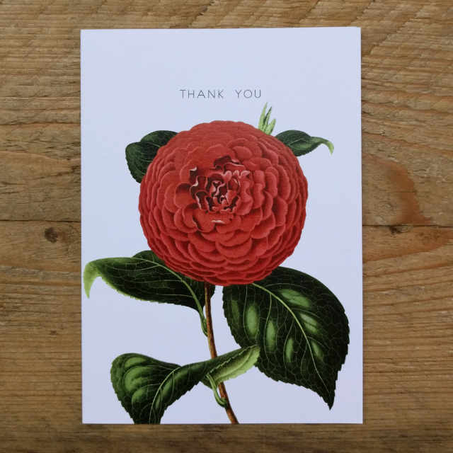 Personalised Stationery : A6 Note Card : Chrysanth