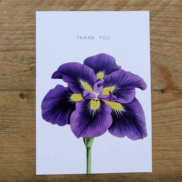 Personalised Stationery : A6 Note Card : Purple Lily
