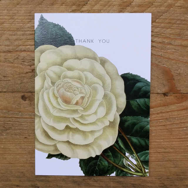 Personalised Stationery : A6 Note Card : White Rose