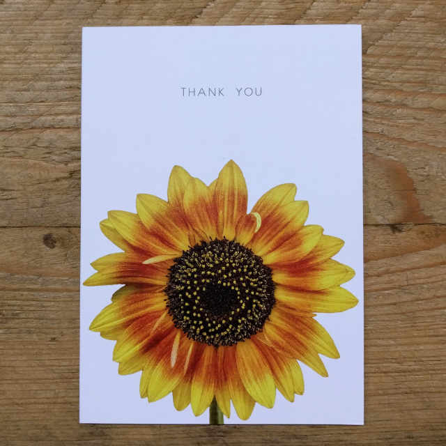 Personalised Stationery : A6 Note Card : Solros
