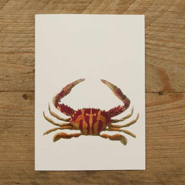 Personalised Stationery : A6 Note Card : Pela