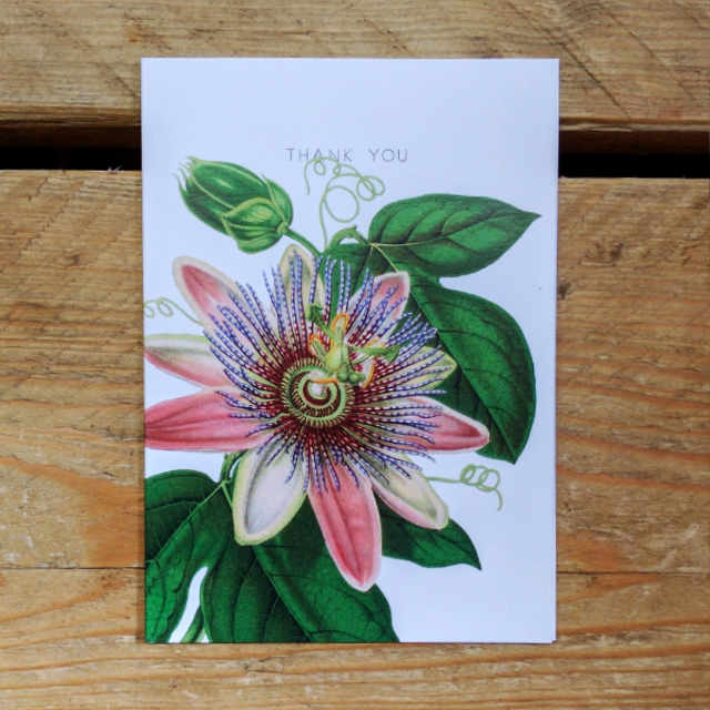 Personalised Stationery : A6 Note Card : Pink Clematis