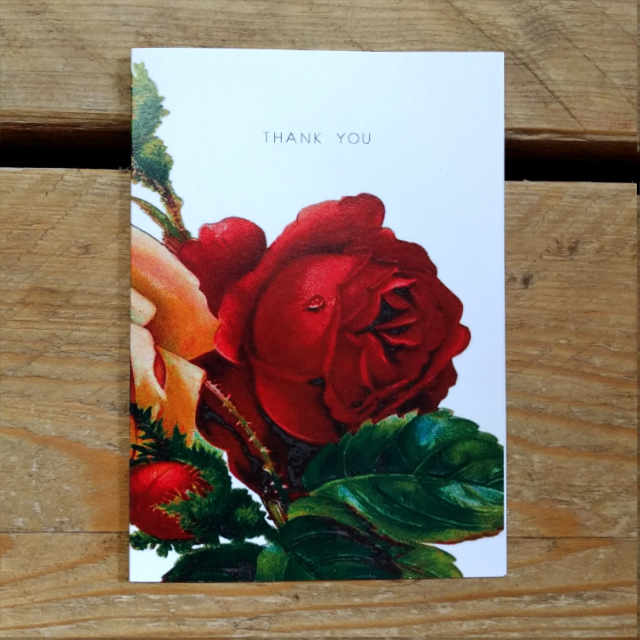 Personalised Stationery : A6 Note Card : Red Rose