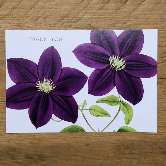 Personalised Stationery : Demi Quarto Postcard : Purple Clematis