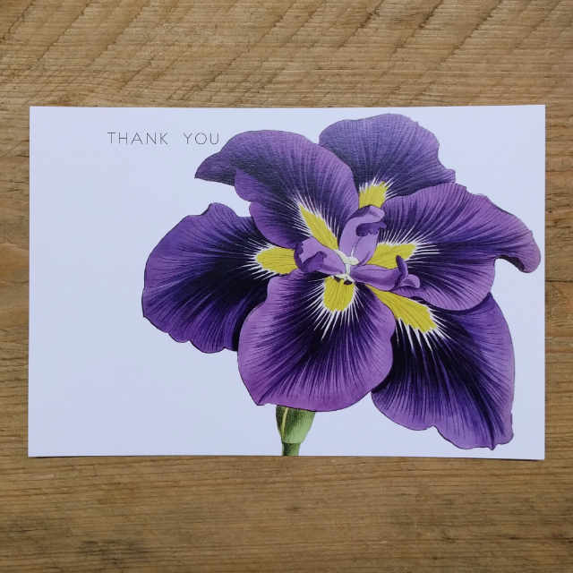 Personalised Stationery : Demi Quarto Postcard : Purple Lily