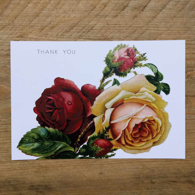 Personalised Stationery : Demi Quarto Postcard : Red Rose